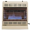 Blue Flame Vent Free Space Heaters